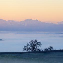 Felder vor einem Nebeltal, im Hintergrund Berge in Sonnendämerung, Foto: Andreas Mühlleitner